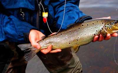 Fishing in Dalarna, Sweden